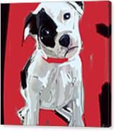 Dog Doggie Red Canvas Print