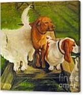 Dog Friends Canvas Print
