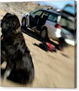 Dog In Front Of A Climbers Car Canvas Print