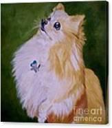 Dog Kuki Canvas Print