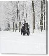 Dog Running In The Snow Canvas Print