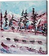 Dog Sled Canvas Print