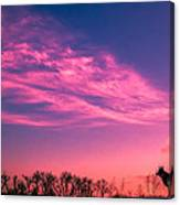 Dog Sunrise 2 Canvas Print