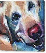 Doggie Breath Canvas Print