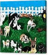 Doggy Daycare Canvas Print