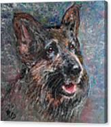 Doggy Dreams Canvas Print