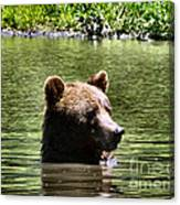 Doggy Paddle Canvas Print