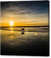 Doggy Sunset Canvas Print