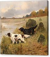 Dogs On The Scent Canvas Print