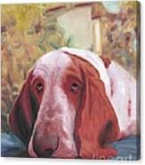 Dog's Portrait No 1 Canvas Print
