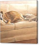 Dogs Sleeping On Couch Watercolor Portrait Canvas Print