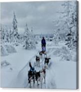 Dogsledding Through The Forest Canvas Print