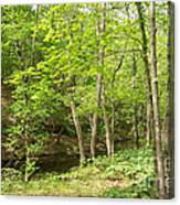 Dogwood Canyon Canvas Print