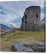 Dolbadarn Castle Canvas Print