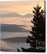 Dolly Sods Wilderness D300_18443 Canvas Print