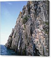 Dolomite Cliff With Guillemot Colony Canvas Print