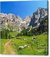 Dolomiti - Contrin Valley Canvas Print