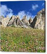 Dolomiti - Flowered Meadow  Canvas Print