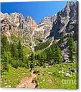 Dolomiti -landscape In Contrin Valley Canvas Print