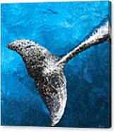 Dolphin Dancing With Light Canvas Print