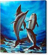 Dolphin Family Canvas Print
