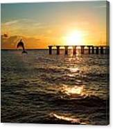 Dolphin Jumping Out Of The Sea In Florida Canvas Print