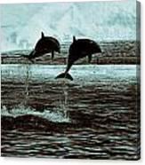 Dolphin Pair-in The Air Canvas Print