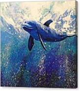 Dolphin Play Canvas Print