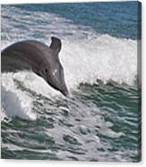 Dolphin Riding The Waves Canvas Print