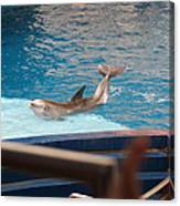 Dolphin Show - National Aquarium In Baltimore Md - 1212104 Canvas Print