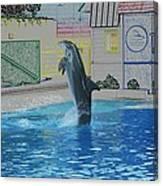 Dolphin Walking On Water Digital Art Canvas Print