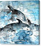 Dolphins In Gran Canaria Canvas Print