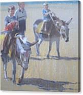 Donkeys At Borth Beach Canvas Print