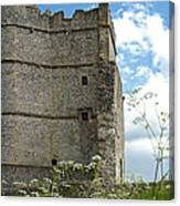 Donnington Castle Canvas Print