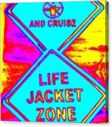 Don't Booze And Cruise Canvas Print