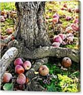Don't Sit Under The Apple Tree With Anyone Else But Me Canvas Print