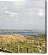 Doolin Bay Canvas Print