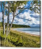 Door County Europe Bay Birch Canvas Print