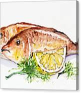 Dorado Fish Canvas Print