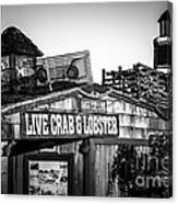 Dory Fishing Fleet Live Crab And Lobster Sign Picture Canvas Print