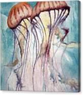 Dos Jellyfish Canvas Print