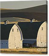 Double Barns Canvas Print