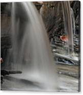Double Cascade Canvas Print