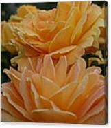 Double Trouble In Bloom Canvas Print