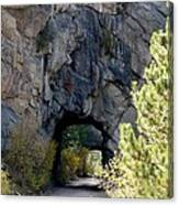 Double Tunnel - Eleven Mile Canyon Canvas Print