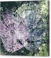 Double Webbed Canvas Print