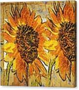 Double Yellowed Canvas Print