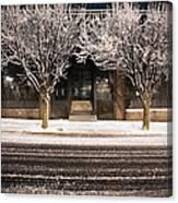 Doubletree Canvas Print