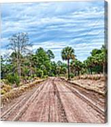 Down Chisolm Island Road Canvas Print
