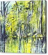 Down On The Bayou Canvas Print